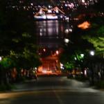 再び無謀な夜の撮影♬