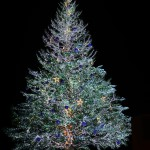 〔më〕函館クリスマスファンタジー点灯式 日本一美しい函館100万ドルの夜景愛好会