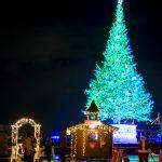 〔më〕2016はこだてクリスマスファンタジーに行ってきました!