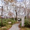 〔më〕ニセコ撮影ドライブ♬〜神仙沼編
