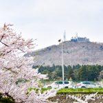 〔më〕桜撮影に行ってきました♬